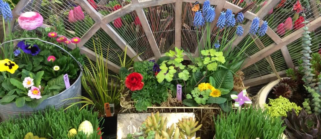 Lane County Home Garden Show Eugene Home Show